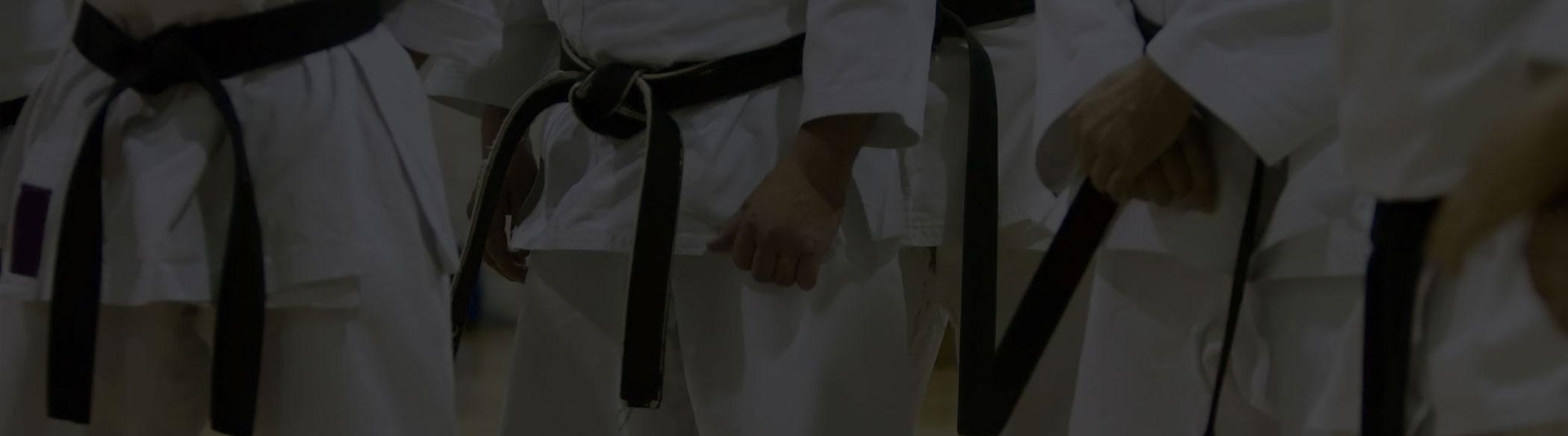 Landing_Page_martial_arts_H1.jpg