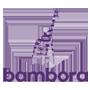bambora.png