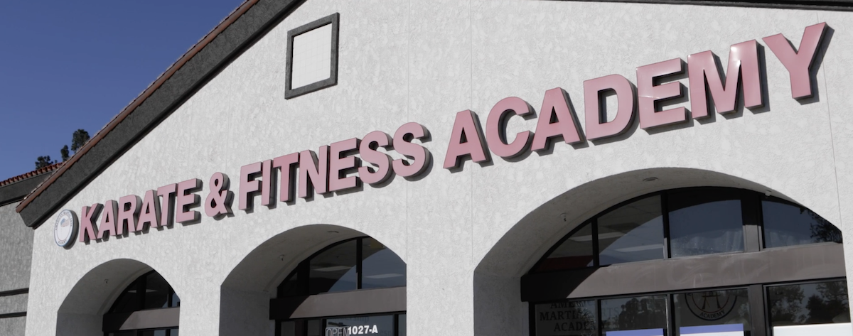 The American Martial Arts Academy