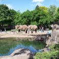 Riverview Park & Zoo